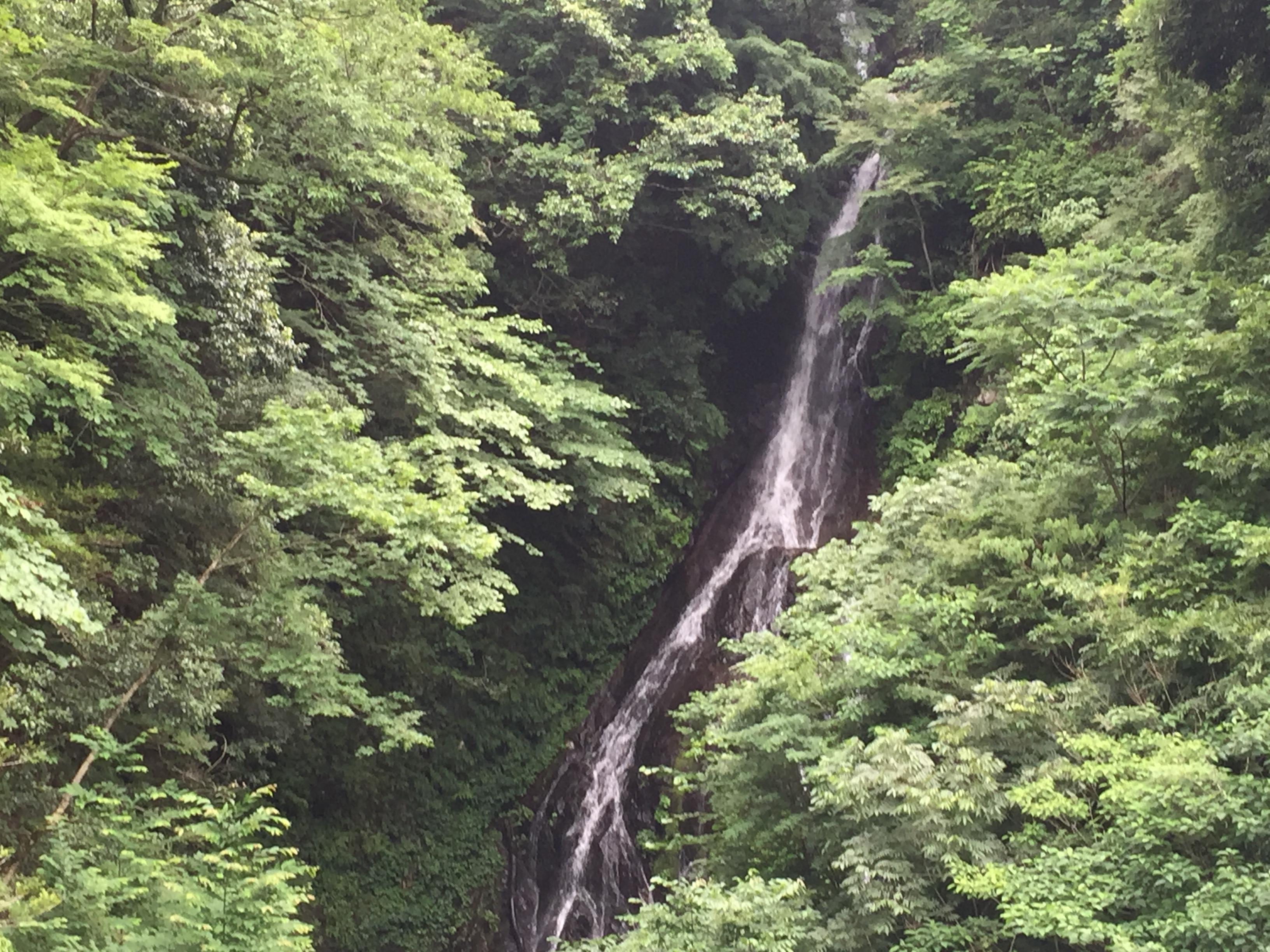 宮ヶ瀬ダムにある滝